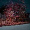 Éjszakai fotó kísérletezés